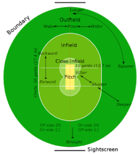 How many players are there in cricket? (player in cricket)