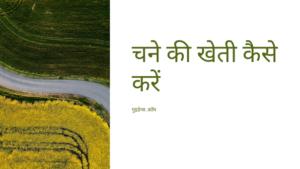चने की खेती कैसे करें – Chane Ki Kheti