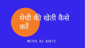 मेथी की खेती कैसे करें – Methi Ki Kheti