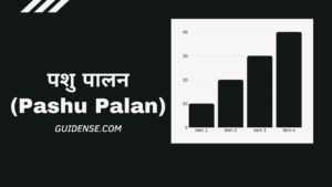 पशु पालन (Pashu Palan) क्या होता हैं ? कैसे करें